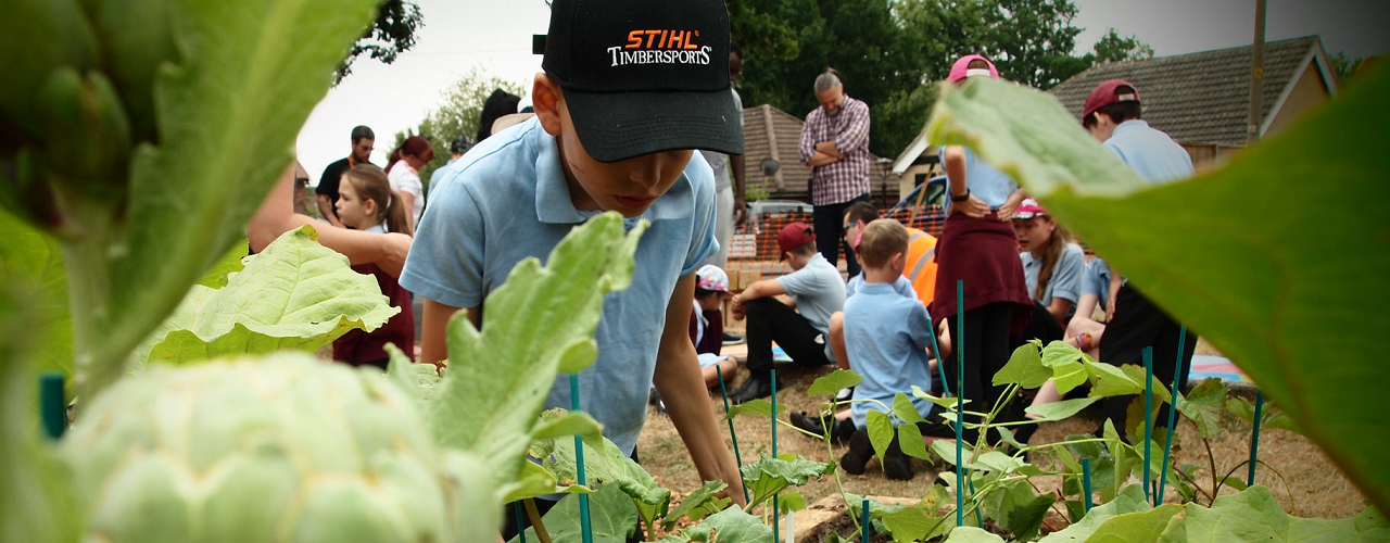 Healthy New Town continues to grow as community garden is launched